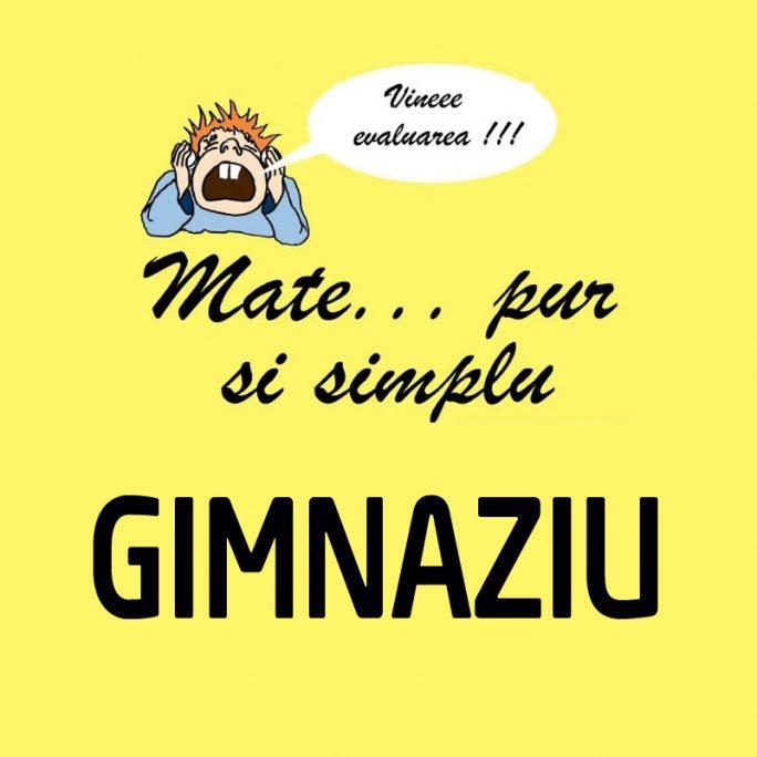 GIMNAZIU